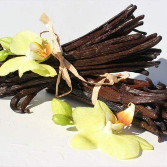 Vaniglia (Bourbon quality) - Bacche