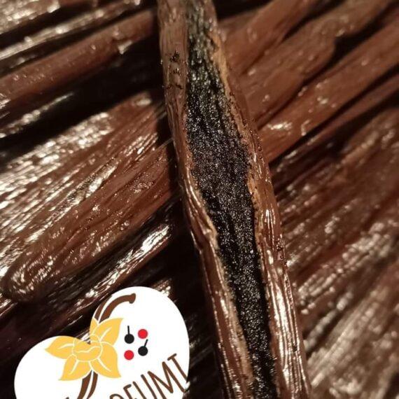 Vaniglia (Bourbon quality) qualità Premium - Bacche